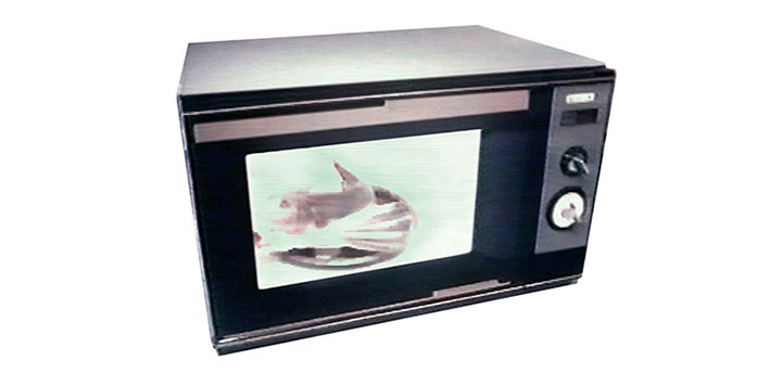 1985 Mitsubishi Electric Releases Microwaves